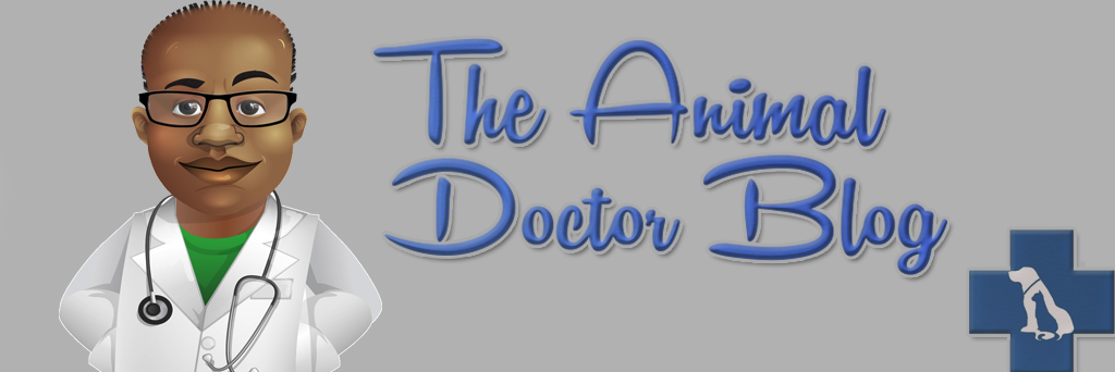The Animal Doctor Blog